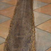 Kuriozita hadí kůže